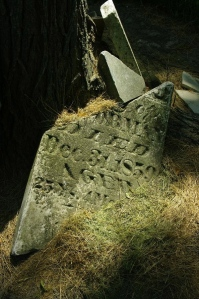 Broken Headstone of Minerva J. Dorman, wife of Watson. She was only 25 years when she passed away. She was buried in Willeford Cemetery.